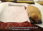 So, I Can't Do My Math Homework...