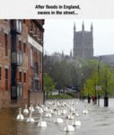After Floods In England...