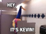 Hey, It's Kevin...