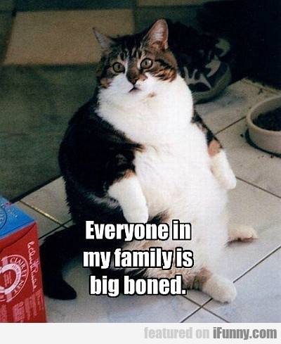 everyone in my family is big boned