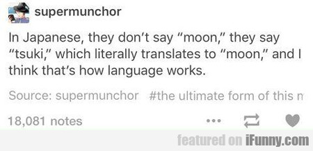 In Japanese They Don't Say Moon...