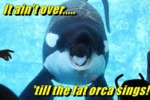 It Aint Over Till The Fat Orca