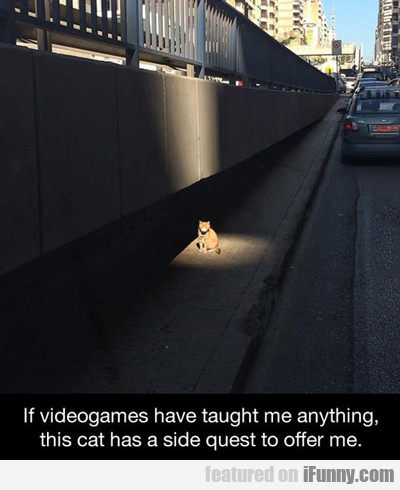 If Videogames Have Taught Me Anything...