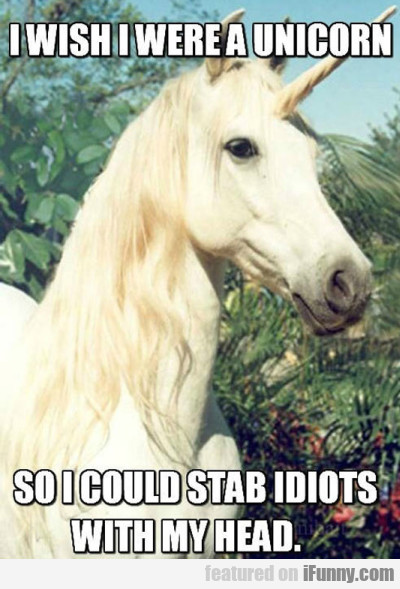 I Wish I Were A Unicorn So I Could Stab