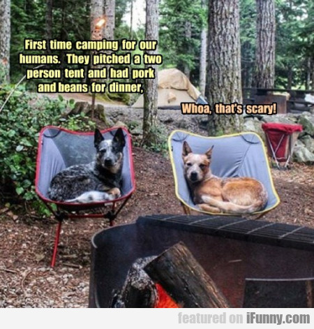 first time camping for our humans