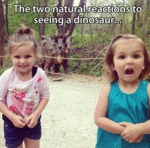 The Two Natural Reactions...