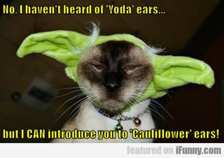 No I Havent Heard Of Yoda Ears