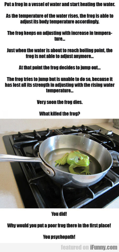 Put A Frog In A Vessel...