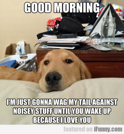 Good Morning I M Just Gonna Wag My Tail Against