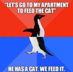 Let's Go To My Apartment To Feed The Cat...