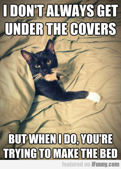I Dont Always Get Under The Covers But When I Do