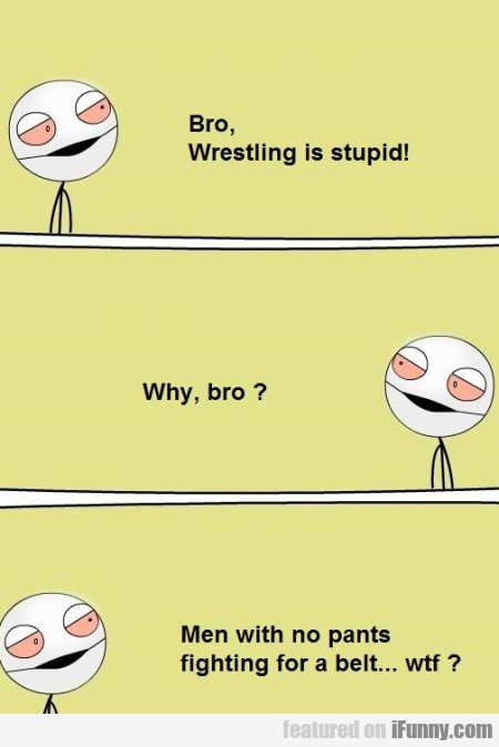 Bro Wrestling Is Stupid Why Bro