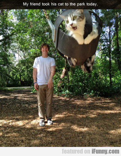 my friend took his cat to the park.p
