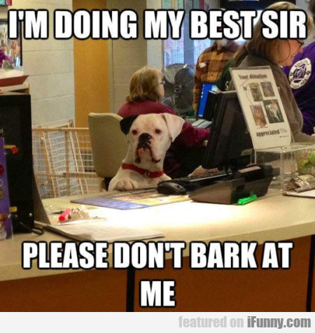 I M Doing My Best Sir Please Dont Bark.