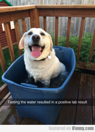 Testing The Water Resulted In A Positive