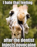 I Hate That Feeling After The Dentist Injects