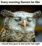 Every Morning Gamers Be Like I Should Have Gone
