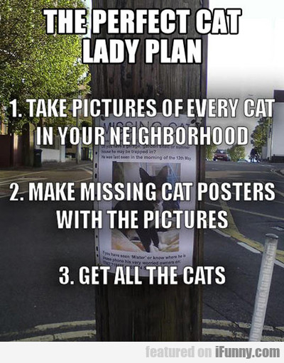The Perfect Cat Lady Plan...