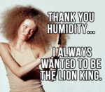 Thank You Humidity...