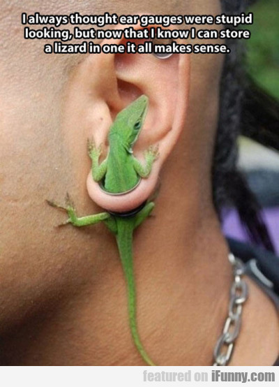 I Always Thought Ear Gauges Were Stupid Looking