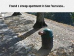 Found A Cheap Apartment In San Francisco...