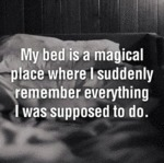 My Bed Is A Magical Place...