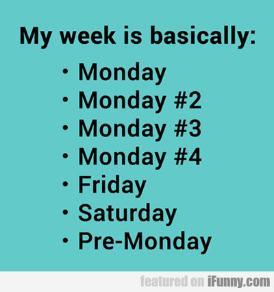 My Week Is Basically...