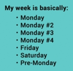 My Week Is Basically - Monday...