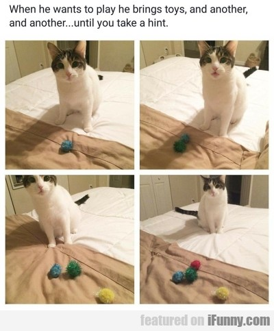 When He Wants To Play He Brings Toys And...