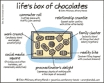 Life's Box Of Chocolates...