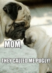 Mom, They Called Me Pugly..