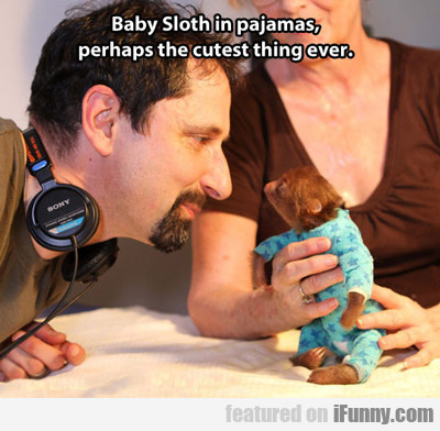 Baby Sloth In Pj's...