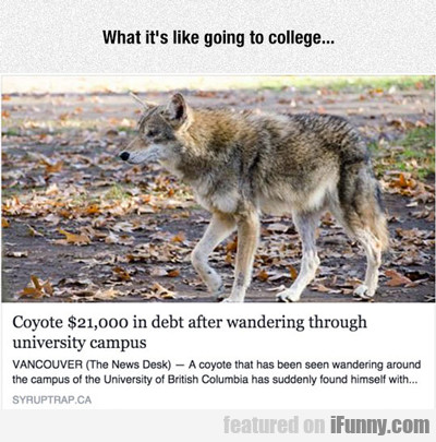 what it's like going to college...