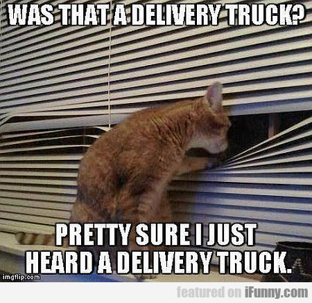 Was That A Delivery Truck?