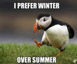 I Prefer Winter Over Summer...