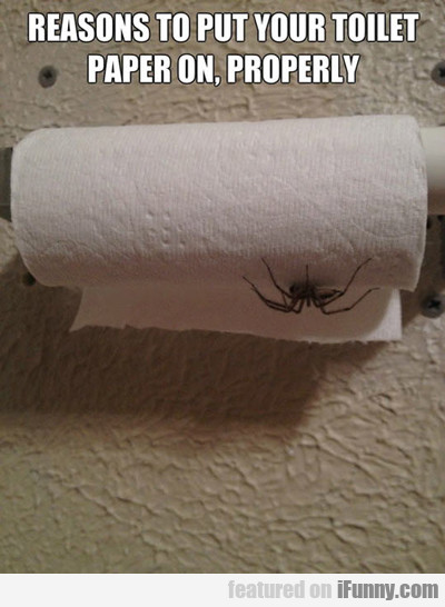 Reasons To Put Your Toilet Paper On Properly...