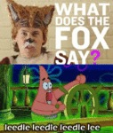 What Does The Fox Say? Leedle...