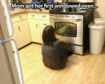Mom Got Her First Windowed Oven...