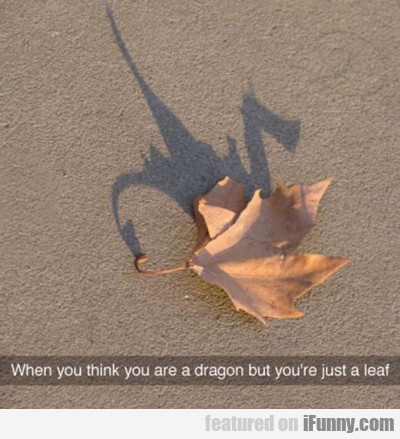 when you think you are a dragon...