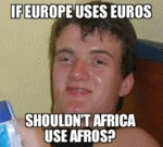 If Europe Uses Euros, Shouldn't Africa Uses...