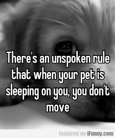 There Is An Unspoken Rule...