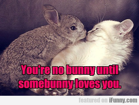 You're No Bunny Until Somebunny Loves You