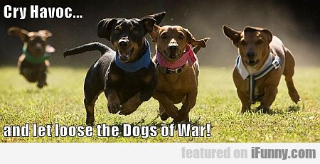 Cry Havoc... And Let Loose The Dogs Of War!