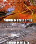 Autumn In Other Cities...