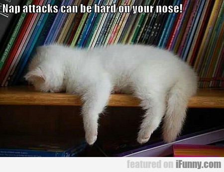 Nap Attacks Can Be Hard On Your Nose...