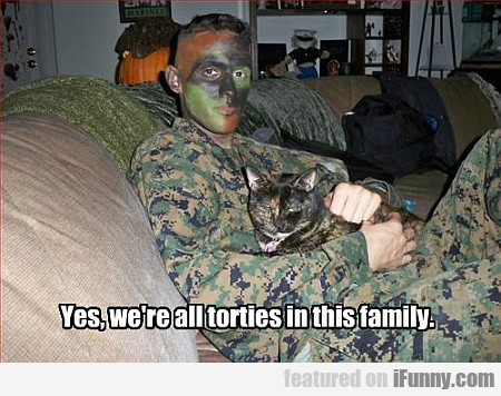 Yes, We're All Torties In This Family