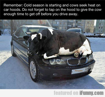 Remember: Cold Season Is Starting...