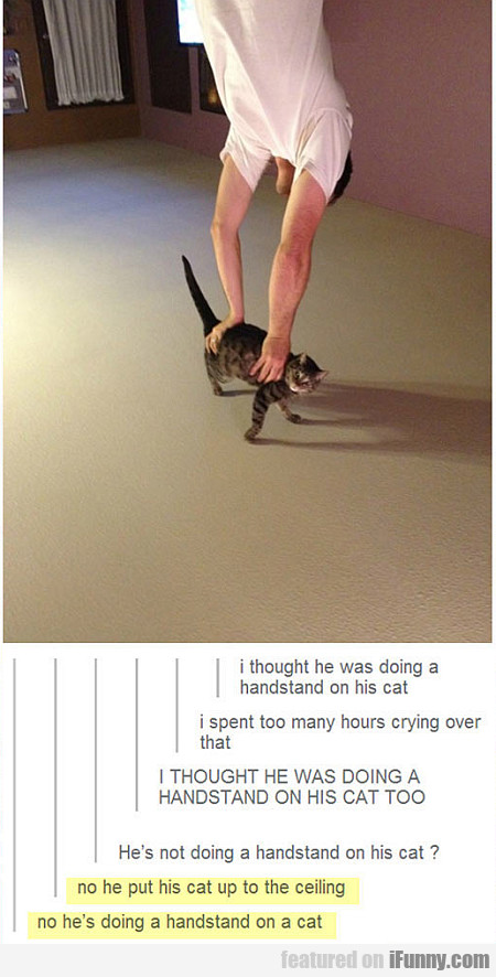 i thought he was doing a handstand on his cat...
