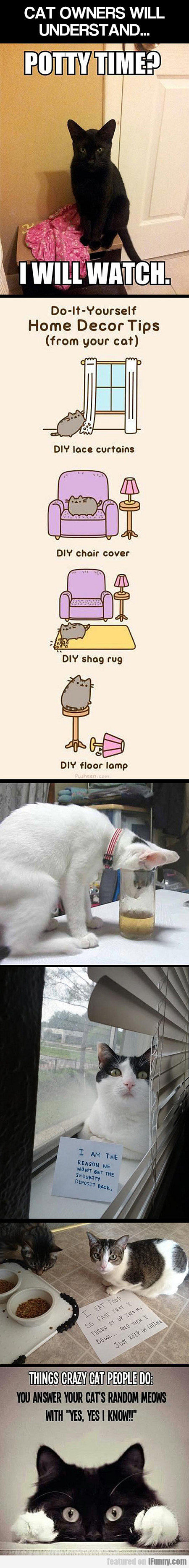 Cat Owners Will Understand...