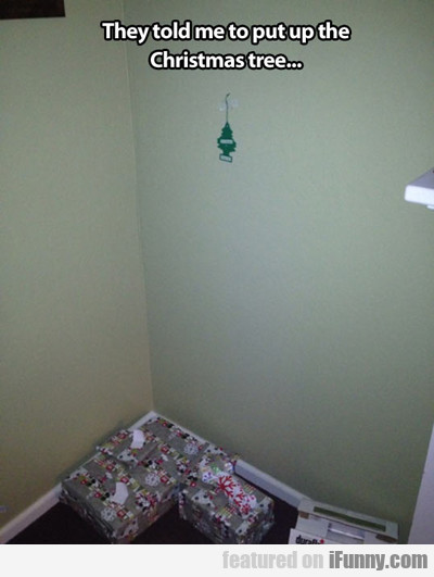 They Told Me To Put Up The Christmas Tree...